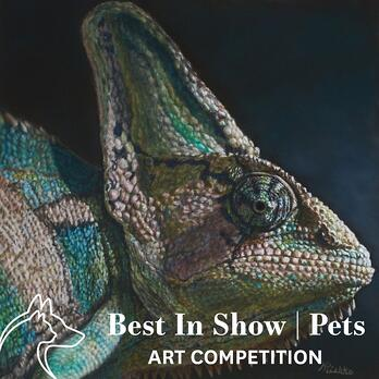 Best In Show   Pets Art Competition